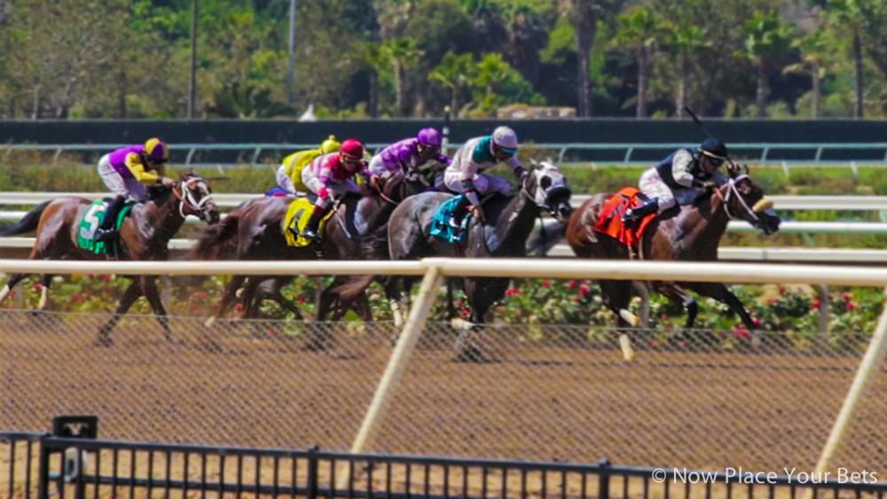 Jul.20.16. Horse racing at Del Mar